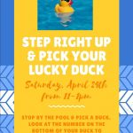 Step Right up & Pick Your Lucky Duck